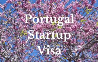 Portuguese Startup Visa