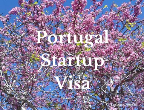 Portugal StartUp Visa – Não é necessário capital para viver na UE, financiamento disponível