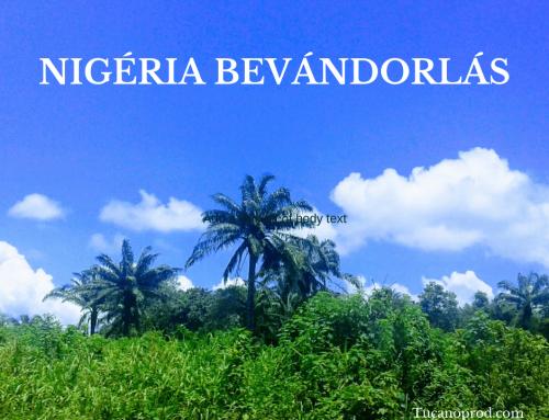 Bevándorlás Nigériába: munkavállalási és tartózkodási engedély – állampolgárság