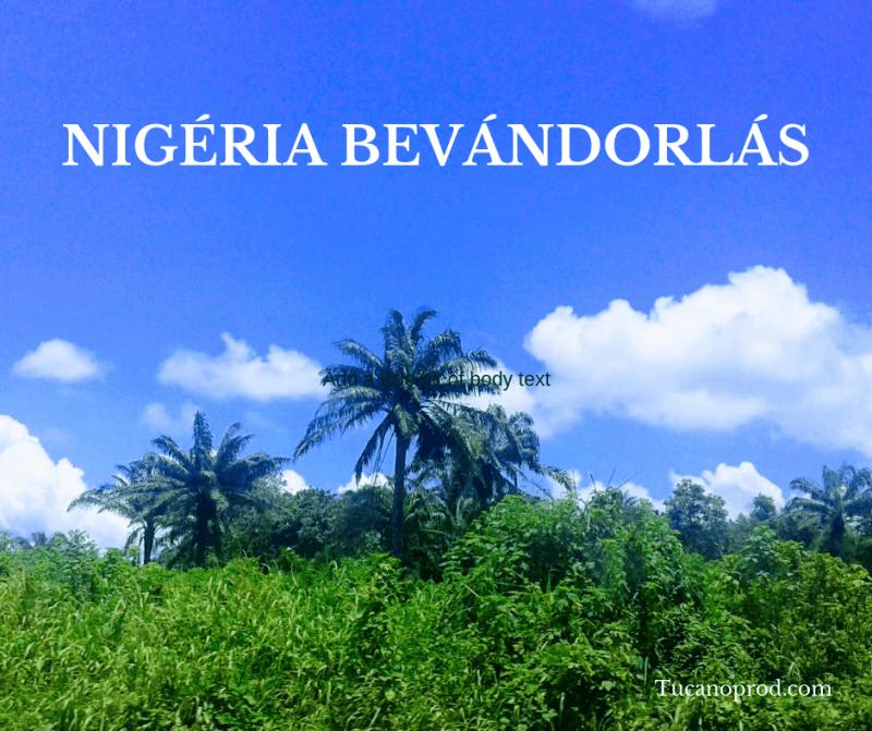 nigéria bevándorlás