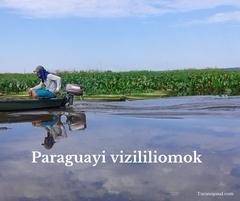 Paraguay_vizililiomok