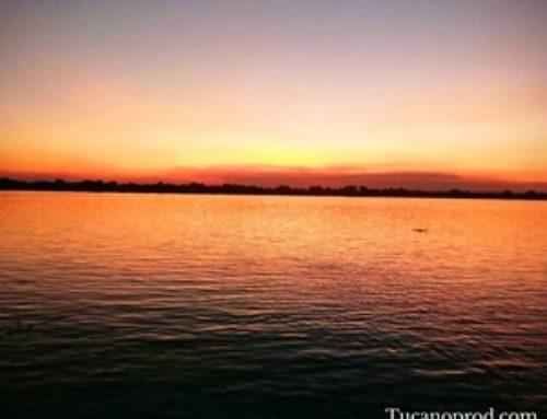 Hogyan szerezz trópusi szigetet? (alcím: Indián lettem Paraguayban)